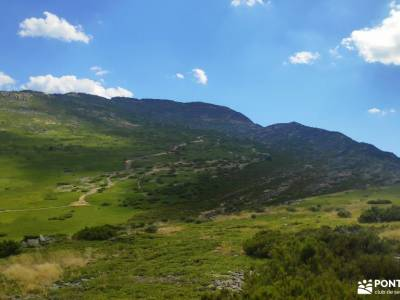 El Ocejón-Reserva Nacional Sonsaz;rutas de trekking viajes activos senderismo con perros madrid rut
